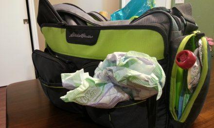 Diaper Bag, Burden Bag